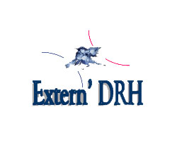 logo-externDRH